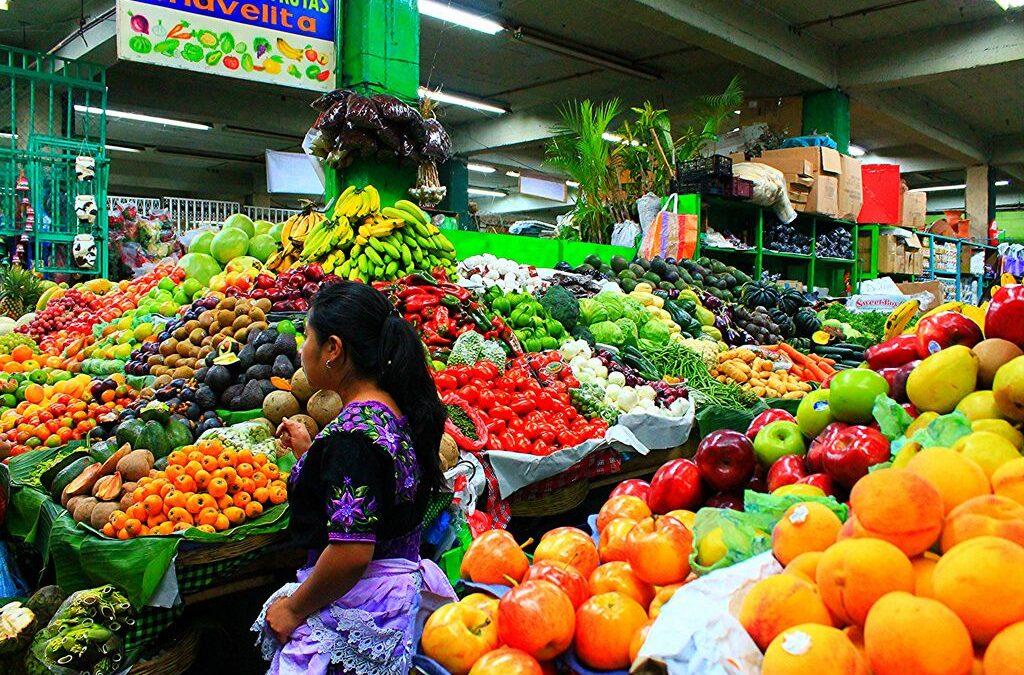 Exportaciones hortifrutícolas siguen creciendo en el Valle #PIF