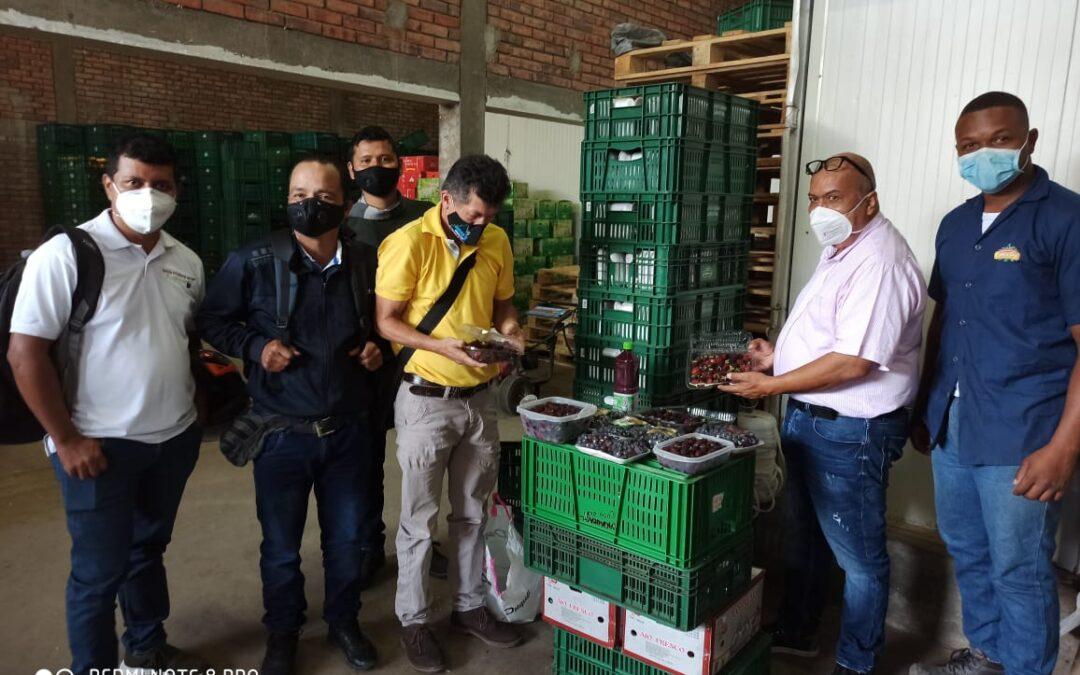 Programa Integral de Fruticultura, fortalece a las asociaciones de fruticultores